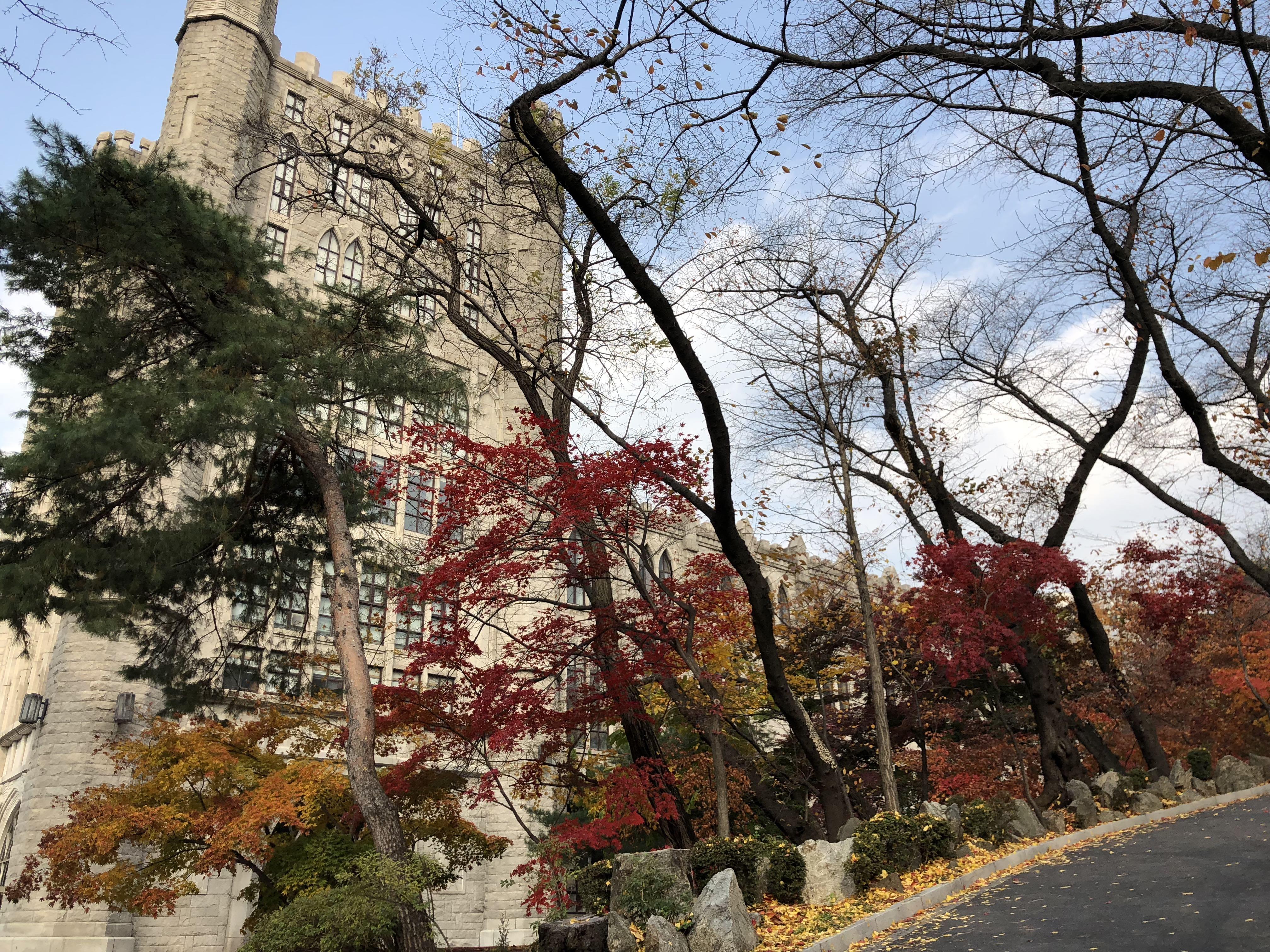 Kyung Hee University - campus photo 11