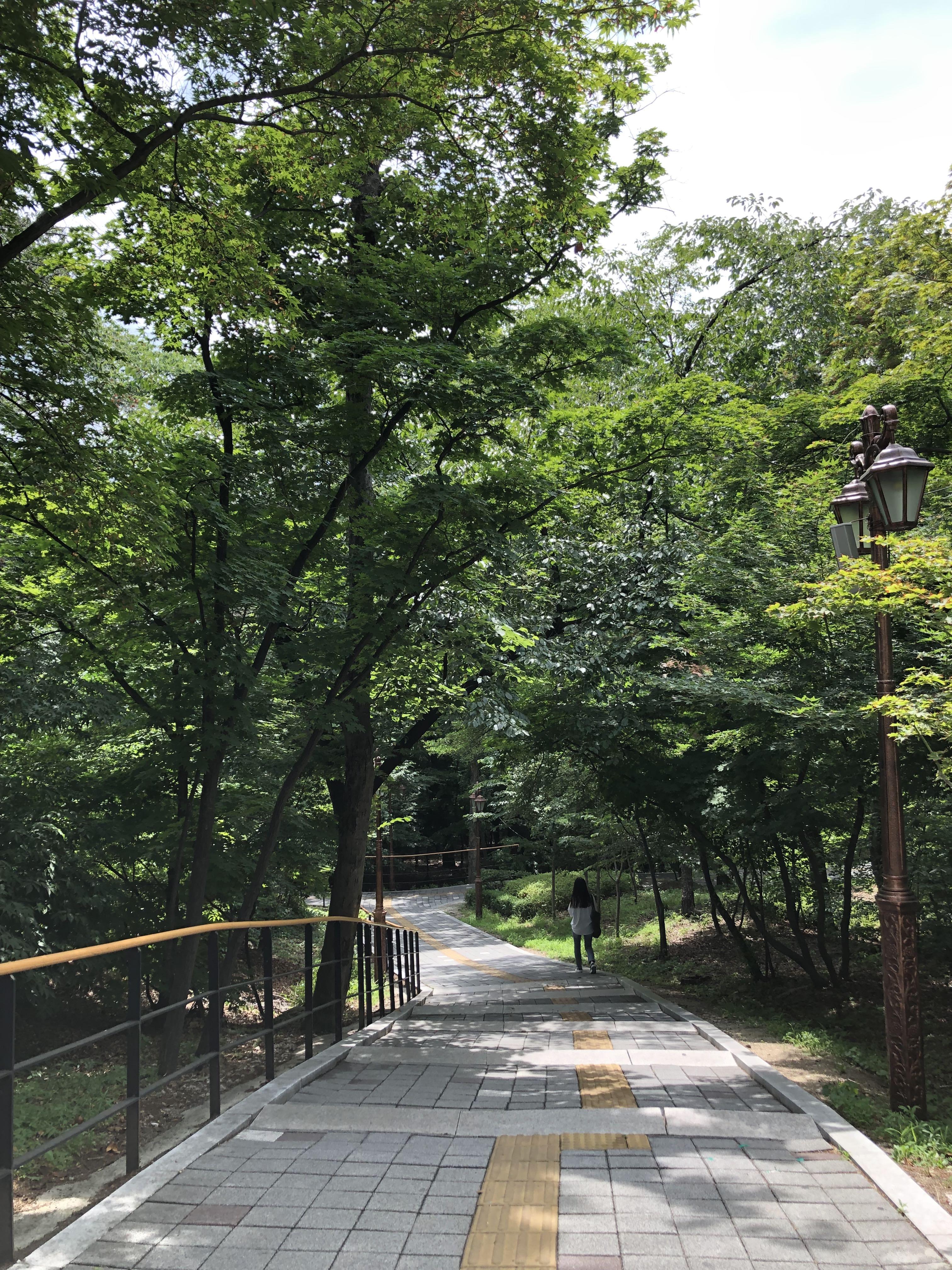 Kyung Hee University - campus photo 4